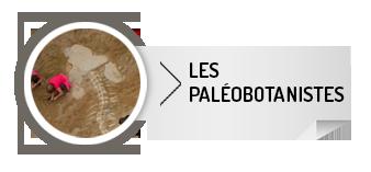 paleob