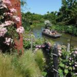 L'odyssée botanique Crédit photo : Coralie Pilard