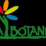 Logo vert sans baseline