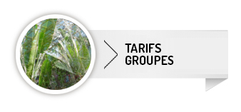 Tarifs Groupes