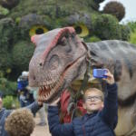 T-Rex awakens