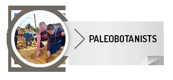 paelobotanist