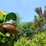 Voyage en coquille de noix Crédit photo : Thierry Huguenin