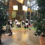 atelier 3 yogis du coeur
